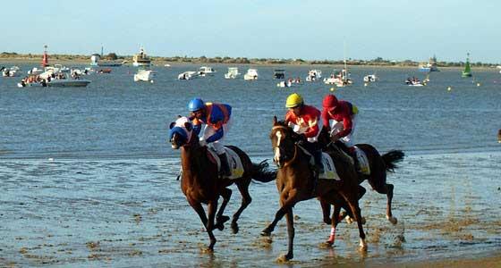Más de 30.000 espectadores acuden cada jornada a las carreras de caballos de Sanlúcar de Barrameda