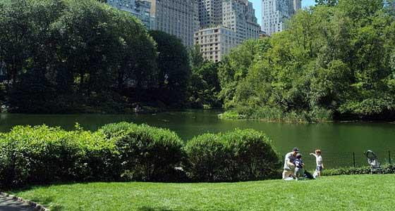 Central Park está repleto de rincones en los que disfrutar de un picnic