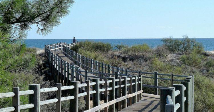Camino para acceder a una de las playas del Algarve (Pixabay)