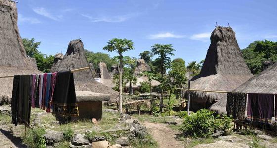 Turismo comprometido / Foto: Octobaby