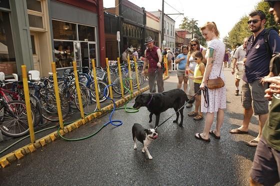 Portland, una de las ciudades más pet-fiendly del mundo