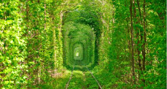 tunel_del_amor