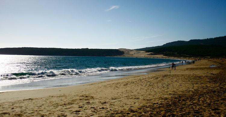 Playa de Bolonia (Cádiz) (Fuente: Flickr)