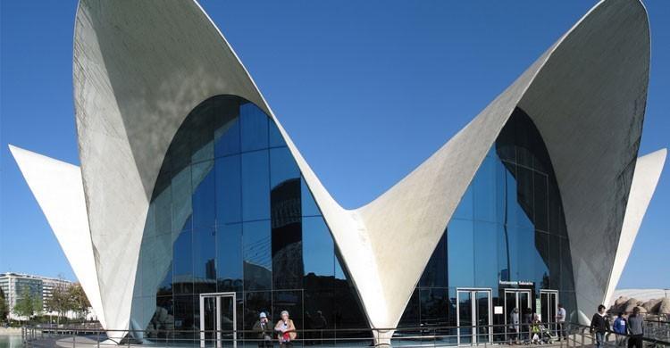 Oceanografic, Valencia (Flickr)