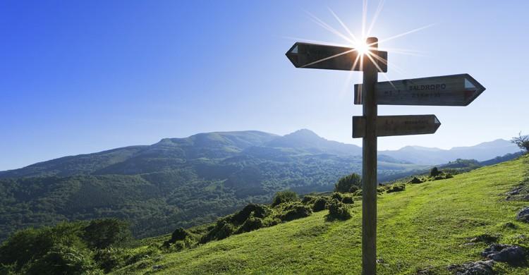 Sin duda, el color que definde Euskadi es el verde. (iStock)