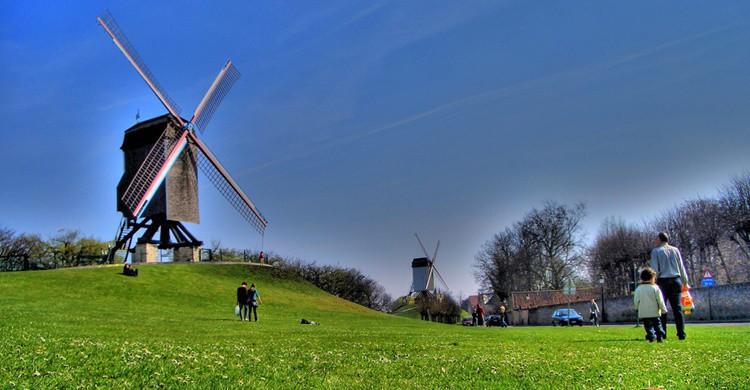 No solo en El Quijote hay molinos... Javier Losa (Flickr)