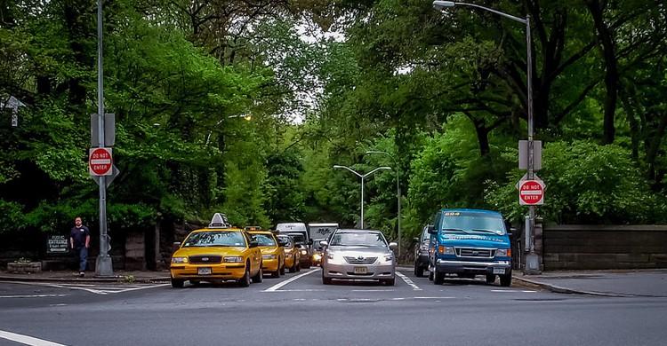 Tráfico en Central Park. Juliana Swenson, Foter