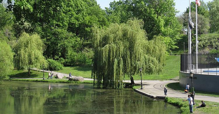 ¿Sabías que puedes pescar en Central Park? ( InSapphoWeTrust, Foter)