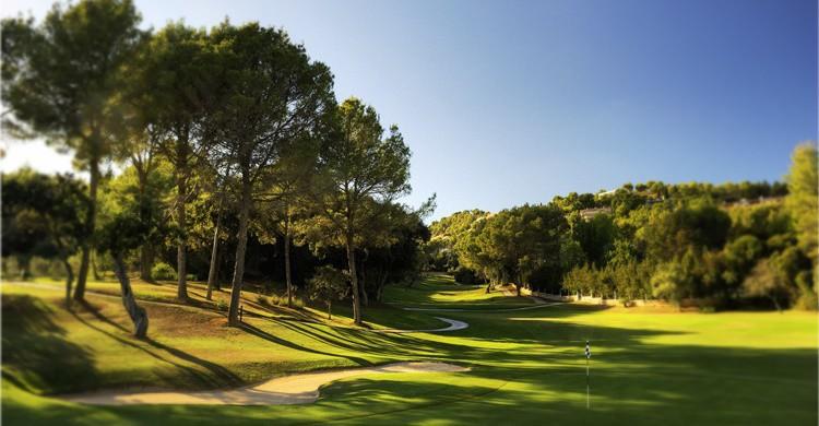 Campo Arabella Golf Son Vida. (http://www.sonvidagolf.com)
