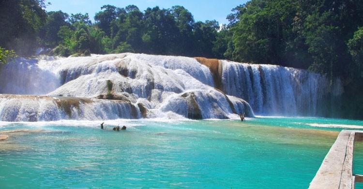 Cascadas de Agua Azul (Istock)