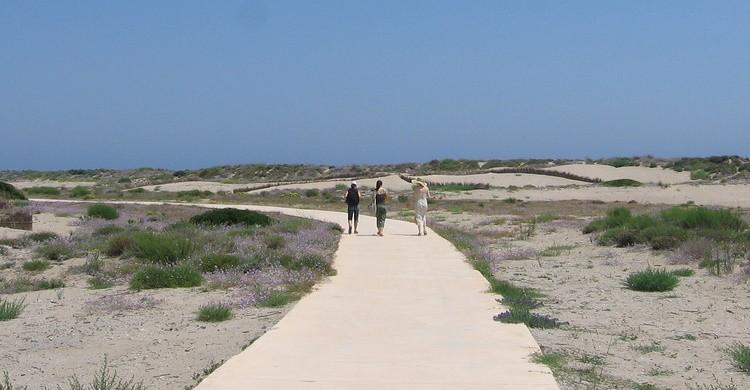 Playa en Valencia. Malgorzata Janerka (Flickr)
