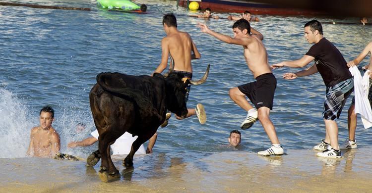 Fiesta de bous a la mar. Emilio del Prado (Flickr)