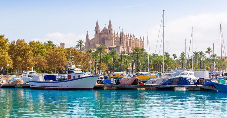 Palma de Mallorca (iStock)