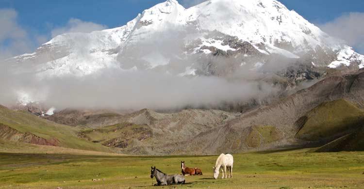 Hay excursiones organizadas para hacer trekking por la zona (iStock)