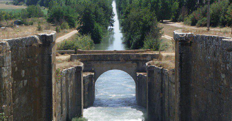 Canal de Castilla a su paso por la localidad palentina de El Serrón. Fernando Jiménez (Flickr)