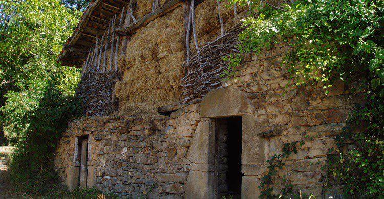 Porcieda. Edescas (Wikipedia Creative Commons)
