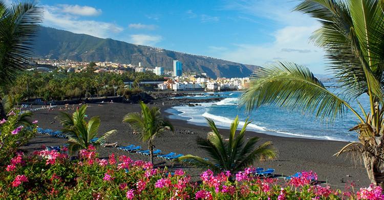Vistas de Puerto de la Cruz, Islas Canarias