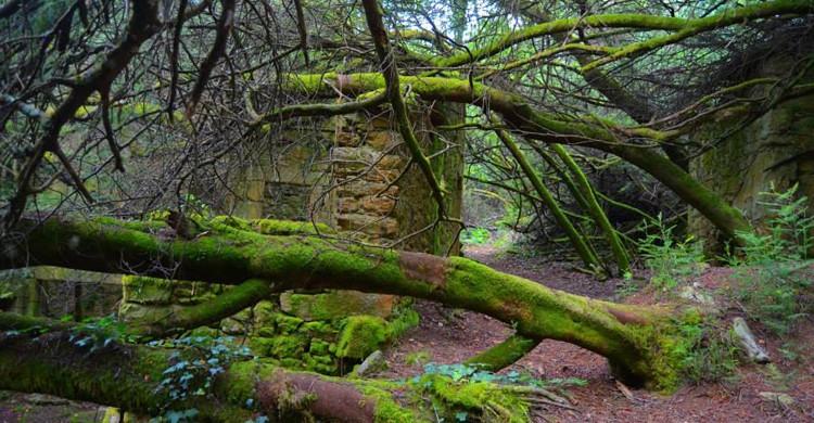 aldeas abandonadas de Galicia