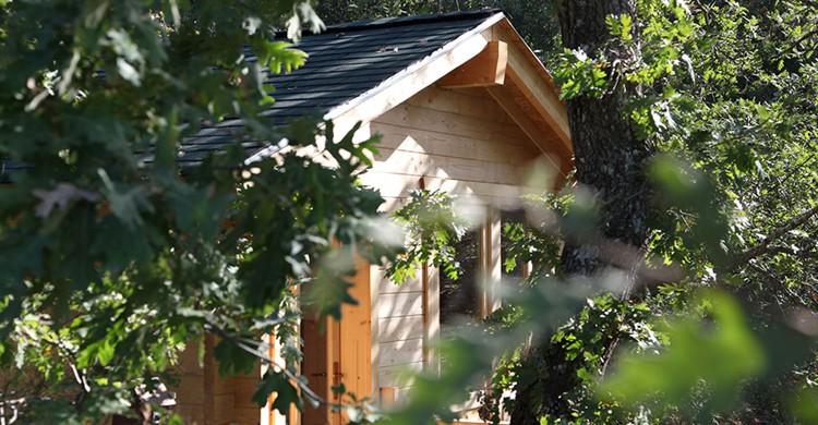 Vista de la cabaña Musgo (Web de Dormir en los árboles)