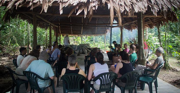 Retiro de ayahuasca