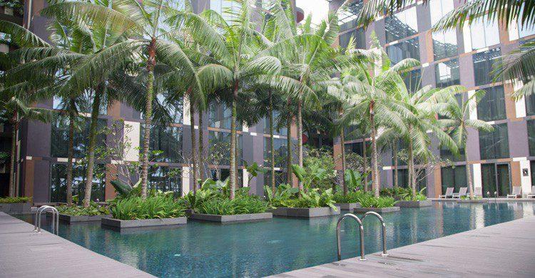 Piscina y zonas de relax en el aeropuerto de Changi (Fuente: Todd Wade / Flickr)