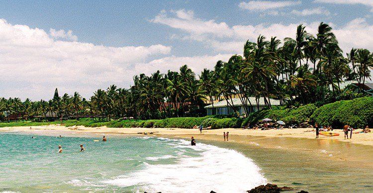 Hawaii de vacaciones y boda