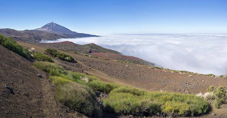 Vistas del Parque Nacional de Las Cañadas del Teide, Islas Canarias