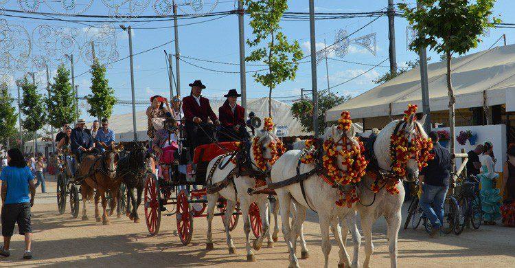 No te pierdas un paseo a caballo en la Feria de Córdoba (Fuente: SK / Flickr)