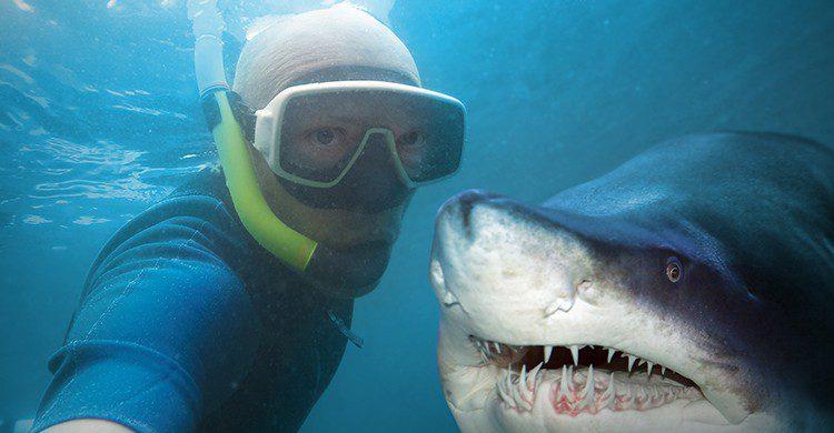 Las personas han dejado atrás el miedo al peligro solo por coger los mejores selfies (iStock)