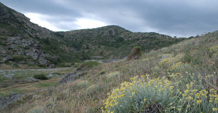 Los accesos a la Cala Tamariua en El Port de la Selva (Fuente: Jordi Roy Gabarra/ Flickr)