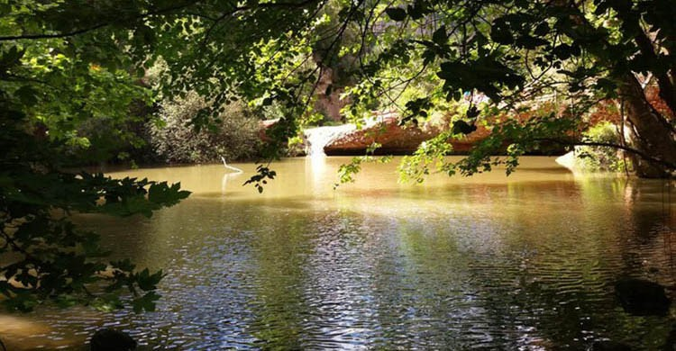 Gorgs del Riu Tena (Wikiloc)